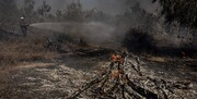 وقوع آتشسوزی در یکی از شهرکهای صهیونیستی اطراف غزه