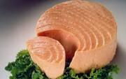 تعطیلی کارخانه های کنسرو ماهی در کشور