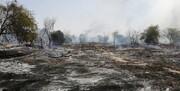 ۲۰ هکتار از درختان جنگلی میناب آتش گرفت+ عکس
