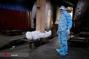 رکوردشکنی عجیب ویروس کرونا در دومین کشور پرجمعیت جهان/تصاویر