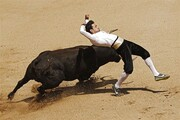 روش عجیب یک مرد برای سواری گرفتن از گاو وحشی + فیلم