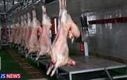 افزایش تولید گوشت قرمز در مرداد ماه
