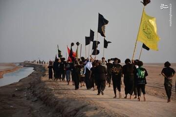 گزارش تصویری از پیاده روی زائران اربعین به سمت کربلا