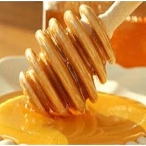 نشانه های بیماری زخم معده چیست؟ / درمان زخم معده  با عسل