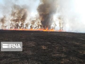 آتش سوزی در تالاب میانگران ایذه