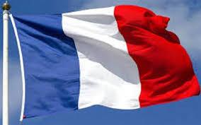 ۲۳۱ تبعه خارجی در آستانه اخراج از فرانسه