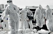 روز سیاه کرونا؛ کرونا بی محابا می تازد/ فوت ۳۳۷ بیمار در ۲۴ ساعت گذشته