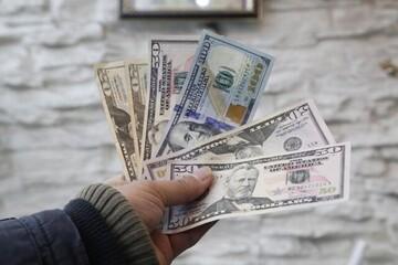 از میلیونها دلار ارزپاشی بانک مرکزی استقبال نشد!