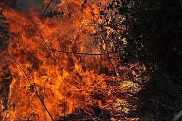 کارگاه مبل سازی در خمینی شهر آتش گرفت