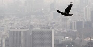تشدید بحران کرونایی کشور با آلودگی هوا