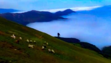 تصاویر دیدنی و خارق العاده از طبیعت ایران + فیلم