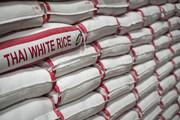 ادامه سکوت وزارت صمت در ماجرای فاسد شدن ۲۰۰ هزار تن برنج