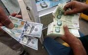 ارزش پولی ملی در ۴۰سال ۳۵۰۰برابر کاهش یافت/ سقوط ۳۰ درصدی درآمد سرانه ایرانیها