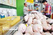 توزیع مرغ گرم و منجمد در سراسر کشور / قیمت
