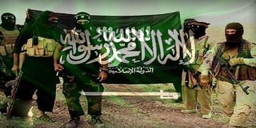 مفتی داعش حمایت مالی سعودیها از گروههای تروریستی را فاش کرد