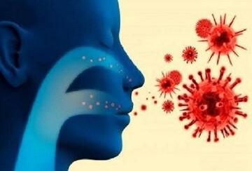 فوت ۲۹ کرمانی بر اثر ابتلا به کرونا
