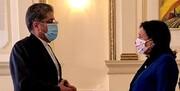 سفیر جدید ایران در گرجستان استوارنامه خود را تقدیم رئیسجمهور این کشور کرد