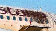حمله زنبورها به هواپیمای مسافربری / فیلم