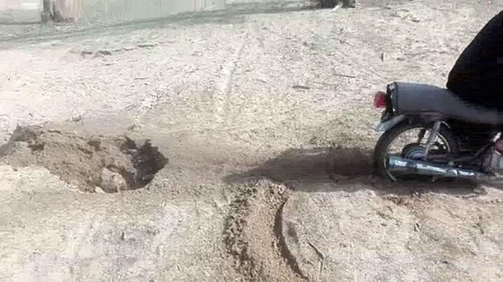 بی رحمترین شیوه سگ آزاری در بوشهر/ عکس