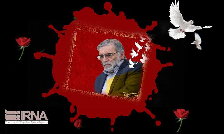 واکنش تاجیکستان به ترور شهید فخریزاده