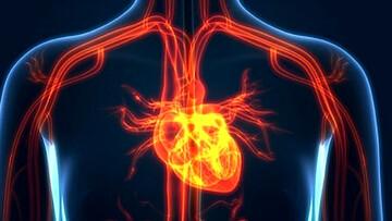بلایی که گردش خون نامناسب در بدن به وجود می آورد