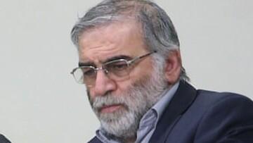 سوابق و تصاویر عاملان ترور شهید فخریزاده در دست وزارت اطلاعات است