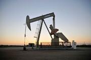 مخالفت اکثر اعضای اوپک پلاس با افزایش تولید نفت