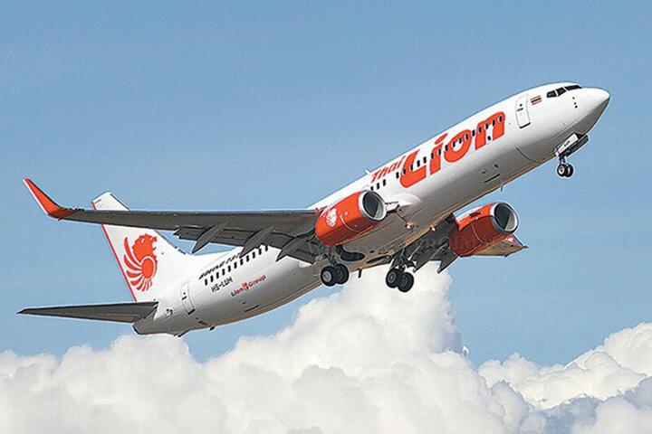 تصاویری دردناک از مسافران در حال سقوط در یک هواپیما / فیلم