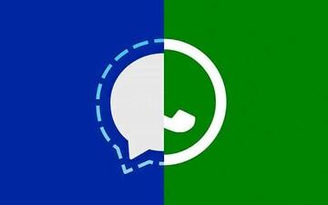 کوچ کاربران واتساپ به تلگرام و سیگنال/ چگونه سیگنال را نصب کنیم و از آن استفاده کنیم؟