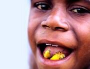 معرفی چندشآورترین غذاهای دنیا / تصاویر