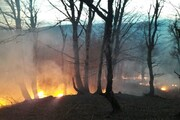 تداوم آتشسوزی اراضی جنگلی جمهوری آذربایجان در مرز آستارا