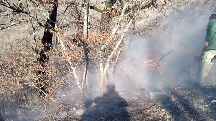 اعزام ۲ بالگرد به منطقه برای مهار آتش سوزی پارک ملی گلستان