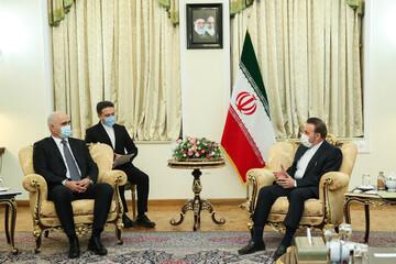 دیدار معاون نخستوزیر جمهوری آذربایجان با محمود واعظی