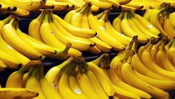 قیمت هر کیلو موز در بازار ۳۲ هزار تومان