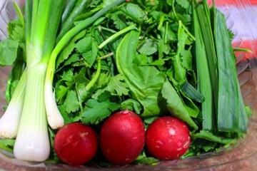 نحوه نگهداری از سبزی خوردن برای مدت طولانی در یخچال