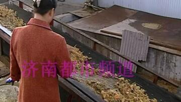 سوسک یک مرد چینی را میلیونر کرد