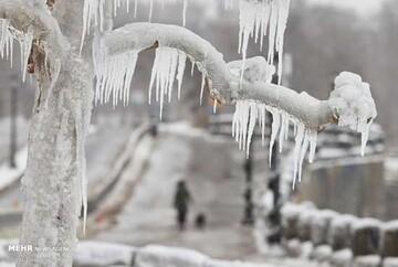 یخ زدن آبشار نیاگارا به دلیل سرمای شدید/ تصاویر