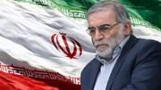 ترور شهید فخریزاده با استفاده از اسلحه یک تنی انجام شد/ تیم ترور متشکل از حداقل ۲۰ ایرانی و اسرائیلی بود