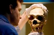مغز اجداد انسان در آزمایشگاه تولید شد!