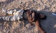 هلاکت ۲۱ تروریست داعشی در سوریه