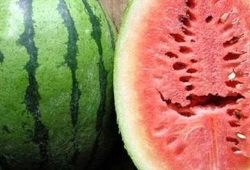 هندوانه هایی که موجب ابتلا افراد به سرطان می شود
