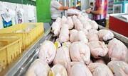 روند کاهش قیمت مرغ در بازار آغاز شد