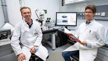 یک داروی ضد پیری بدن کشف شد
