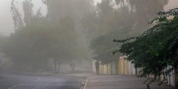 بارش باران و باد شدید در پایتخت از فردا