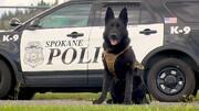 تنبیه یک سگ تحت تعلیم توسط پلیس آمریکا / فیلم