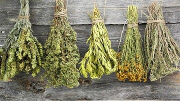 بهترین روش نگهداری سبزیجات چیست؟ | آیا سبزیجات خشک حاوی ویتامین است؟