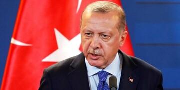 اردوغان: ترکیه به دنبال ایدههای توسعه طلبانه نیست