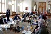 دیدار وزیر خارجه ایرلند با ظریف در تهران