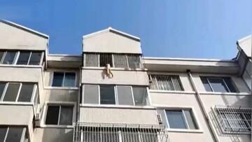 لحظه دلهرهآور نجات جان کودک معلق از پنجره آپارتمان/ فیلم