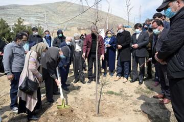 برگزاری آیین درختکاری پایتخت به یاد شاعران و ترانه سرایان معاصر